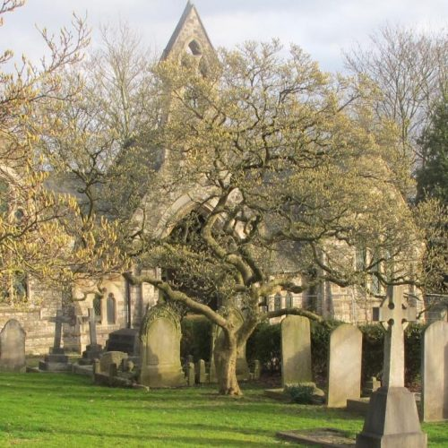 South Ealing Cemetery Chapel project - cropped gravestones
